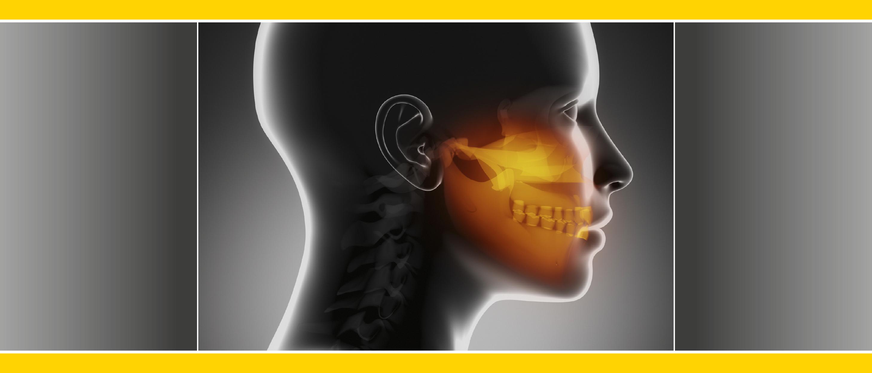 Curriculum: Digitale Dentale Welt 2019 - Abschluss-Event zum 4-teiligen Curriculum in Hamburg | Kurs: zebris